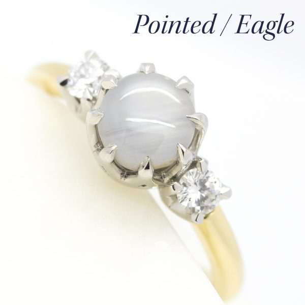 pointed eagle